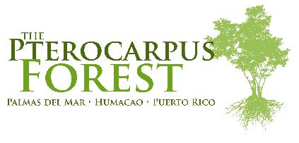 El Bosque Pterocarpus